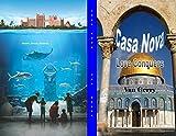 Casa Nova: Love Conquers (English Edition)